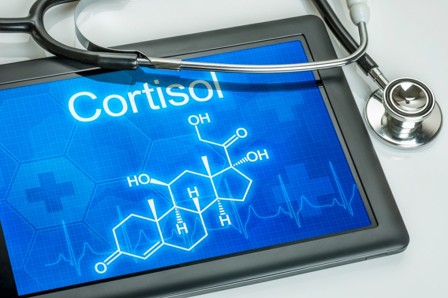 cortisol written on a tablet