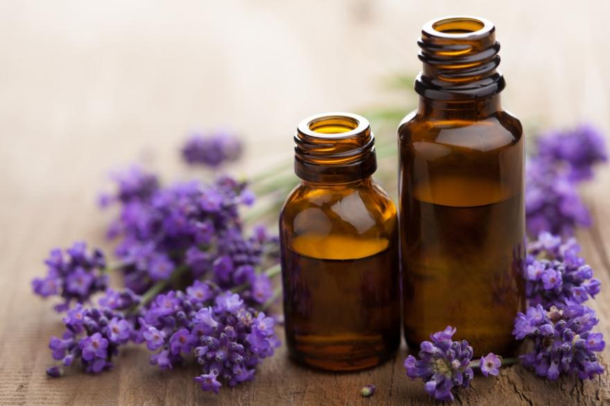 Lavender & Oils