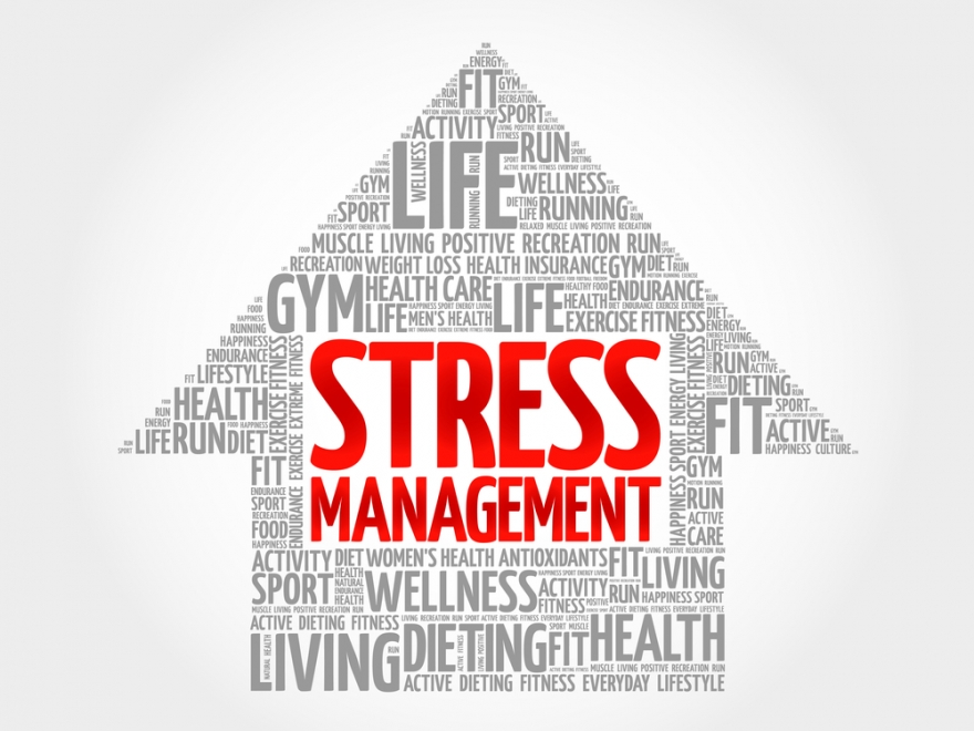 Stress Management Word Cloud