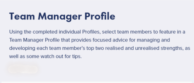MANAGER PROFILE WORDS