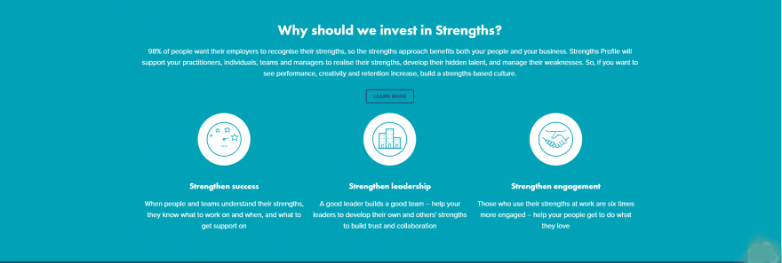 WHY WE SHOULD INVEST IN STRENGTHS