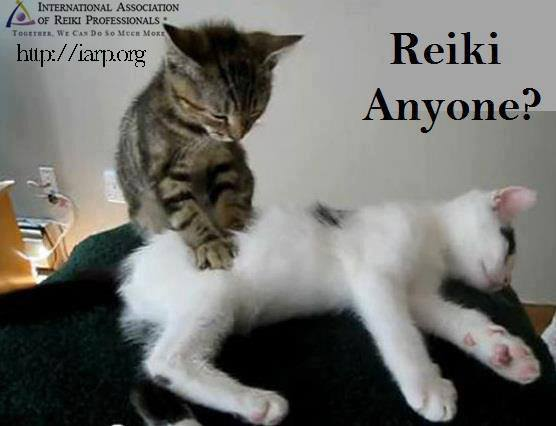 Reiki anyone?